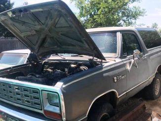 1985 colorado springs co