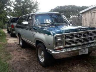 1980 Hempstead TX